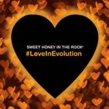 "Sweet Honey In The Rock ""Love In Evolution"""
