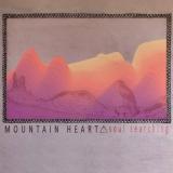 "Mountain Heart ""Soul Searching"""